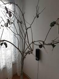 deko ast baum wohnzimmer oder ladendekoration
