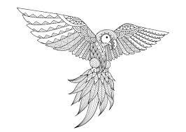 Coloriage Oiseau Beaux Cacatoès