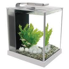 aquarium 10 litre achat vente aquarium 10 litre pas cher