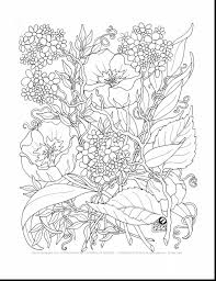 Spectacular Printable Adult Coloring Pages Flowers With Adults And Pdf