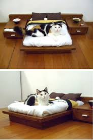 Big Lots Pet Furniture Covers by Best 25 Pet Furniture Ideas On Pinterest Beds For Cats Dog