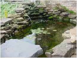 Backyards: Enchanting Backyard Fish Pond Ideas. Garden Fish Pond ... Beautiful This Is The Design I Would Pick Just Fill In Fresh Ideas Fish Pond Design Koi Pictures Sustainable Backyard Farming How To Dig A Raise What Should You Build Ponds And Waterfalls To Make It Diy A Natural Your Institute Of Garnedgingsteishplantsforpond Garden With Waterfall Mini Outdoor Installation Hgtv Picture Home Fniture Ce Pontz Sons Landscape Koi Fish Pond Garden Ideas 2017 Dignforlifes Portfolio Designs Small Backyard Ponds