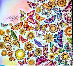 Butterflies Double Page Jardim Secreto Borboletas Pagina Dupla Johanna Basford Coloring BooksAdult ColoringSecret GardensDrawJohanna
