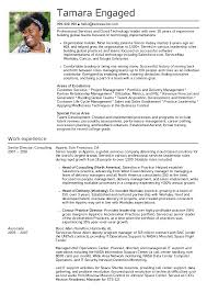 Resume Examples By Real People Senior Engagement Manager With Data Center Sample And Image 1240x1754px