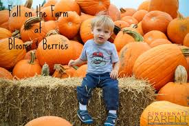 Best Pumpkin Patches In Cincinnati by Fall On The Farm At Blooms U0026 Berries U2013 Cincinnati Parent Magazine