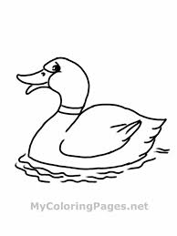 Printable Duck Coloring Pages For Kids Animal Place Happy Daffy Page