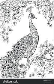 Free Secret Garden Coloring Pages Pdf Vegetable Printable Book Peacock Flower
