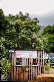 Waimanalo Pumpkin Patch Oahu by Blog Page 67 Of 80 Fun Oahu Family Photography By Little Bird