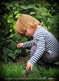 Varieties Of Pumpkins Uk by Sun Hats U0026 Wellie Boots Celebrating Harvest 21 Activities For