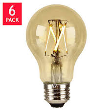 indoor outdoor light bulbs costco