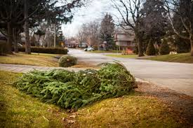 Christmas Trees Vancouver Wa by Christmas Tree Disposal Recycling In Metro Phoenix
