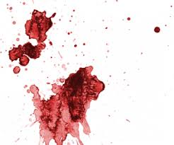 Remove Blood Stain From Carpet by How To Remove Dried Blood Stains Remove Stains