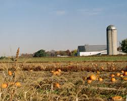 Pumpkin Picking Near Lancaster Pa by Visiting Lancaster County In Fall Plan Your Trip At Discover