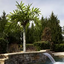 Artificial Palm Trees In Landscape Tropical With Next To Palm ... Front Yard Landscaping With Palm Trees Faba Amys Office Photo Page Hgtv Design Ideas Backyard Designs Wood Above Concrete Wall And Outdoor Garden Exciting Tropical Pools Small Green Grasses Maintenance Backyards Cozy Plant Of The Week Florida Cstruction Landscape Palm Trees In Landscape Bing Images Horticulturejardinage Tree Types And Pictures From Of Houston Planting Sylvester Date Our Red Ostelinda Southern California History Species Guide Install