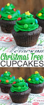 Pet Friendly Christmas Tree Preservative Recipe by 17 Best Images About Cupcake Recipes On Pinterest Vanilla