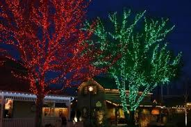 Sweet Looking Christmas Lights For Trees Contemporary Decoration