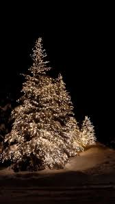 The Magic Of Outdoor Christmas Lights In Snow Love This I Want Trees Outside To Decorate