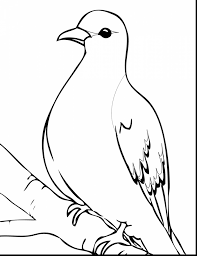 Mourning Dove Clipart Black And White 4