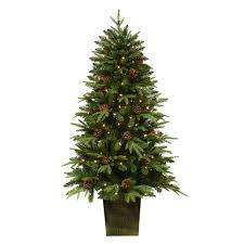 Live Christmas Trees At Kmart by Trim A Home 5 U0027 Pre Lit Potted Silver Oak Pine Tree