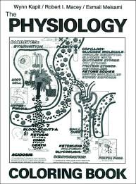 The Physiology Coloring Book By Wynn Kapit Robert I Macey Keith J Karren Esmail Meisami