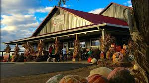 Ms Heathers Pumpkin Patch Louisiana by These Are The Best Pumpkin Patches In Every Southern State