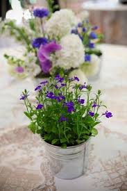 Flower Containers For Weddings Best 25 Potted Plant Centerpieces Ideas Herb Beautiful