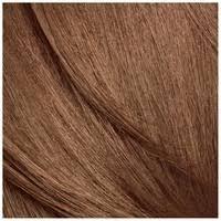 Clairol Nice n Easy 6W 116B Natural Light Caramel Brown