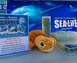 sea aquarium home