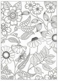 Artist Johanna Basford Secret Garden Coloring Pages Flower Colouring