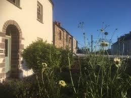 100 Prospect House St Davids City Open Gardens Saturday 30th