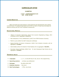 Career Objective For Resume Experienced Software Engineers Valid 28