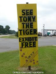 Keep ROARING For Tony The Truck Stop Tiger! A @Dodo Community Page ...