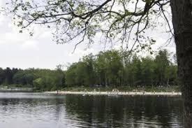 Laurel Bed Lake by Laurel Lake At Pine Grove Furnace State Park