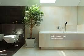 minimalistische moderne badezimmer mit tageslicht stock foto