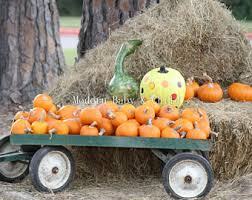 Pumpkin Patch Caledonia Il For Sale by Pumpkin Patch Baby Etsy