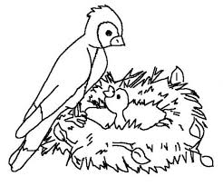 Birds Coloring Pages Getcoloringpages In Free Bird