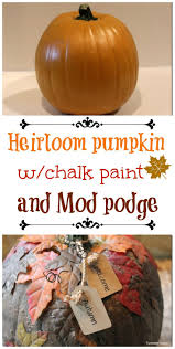Mayfield Pumpkin Patch by 7 Best Halloween Traditions Images On Pinterest Halloween