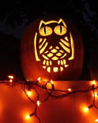Scooby Doo Pumpkin Carving Ideas by Owl Pumpkin So Cute Things I Wanna Do Pinterest Owl