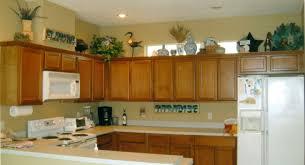 Full Size Of Kitchenkitchen Shelving Ideas Modern White Kitchen Shelf Decorating Microwave