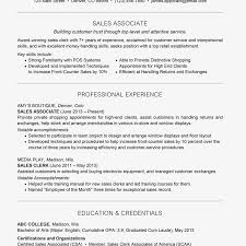 Resume Example With A Headline And A Profile Profile Summary For Experienced Jasonkellyphotoco Sample Templates Of Professional Resume How To Write A Profile Examples Writing Guide Rg Finance Manager Example Disnctive Documents Objective Samples Good As Resume Receptionist On Marketing 030 Template Ideas Best Word Cv 19 Statements Tips