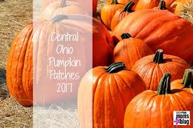 Pumpkin Patch Hayrides Lancaster Pa by Central Ohio Pumpkin Patches 2017