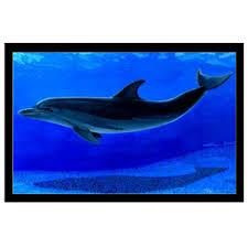 chambre dauphin tapis de sol dauphin