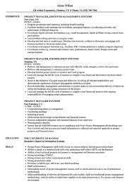 Project Manager Systems Resume Samples Velvet Jobs S Acumen Management Pty Ltd Services 840