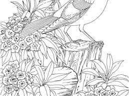 Free Birds Jake Reggie And Jenny Coloring Page