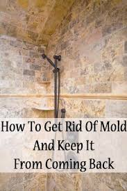 best 25 shower mold cleaner ideas on cleaning mold in