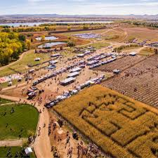 Denver Area Pumpkin Patches by The 7 Best Corn Maze Pumpkin Patch Combos In Colorado Outthere