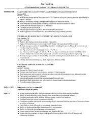 Download Client Service Account Manager Resume Sample As Image File
