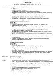 Senior Merchandiser Resume Samples | Velvet Jobs 96 Fashion Mchandiser Resume 14 Merchandising Visual Merchandising Rumes Suzenrabionetassociatscom Visual Format This Resume Was Written By A Summary Sample Portfolio For Fresh Inside Samples Templates Visualcv Velvet Jobs Fashion Mchandiser Cv Format For Sample Download Unique 13 Examples Database Retail Sales Associate Elegant 24 Best Professional