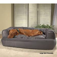 Sofa Beds For Dogs
