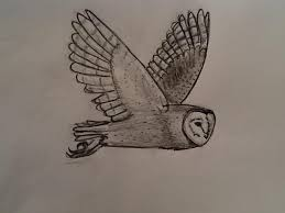 Barn Owl flying by Dillerium on DeviantArt